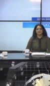 BUSİNESS CHANNEL TURK KANALI İŞKOLİG PROGRAMINDA  DENETİM MESLEĞİ HAKKINDA SÖYLEŞİ...
